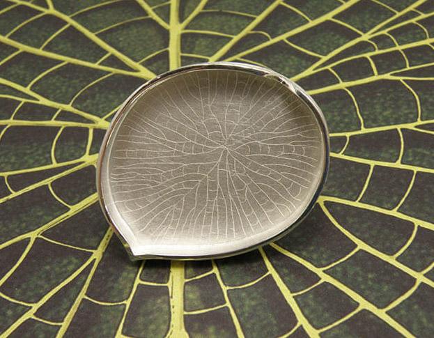 oorsieraden onder het oor, hortus * banksia serrata * 1895,-