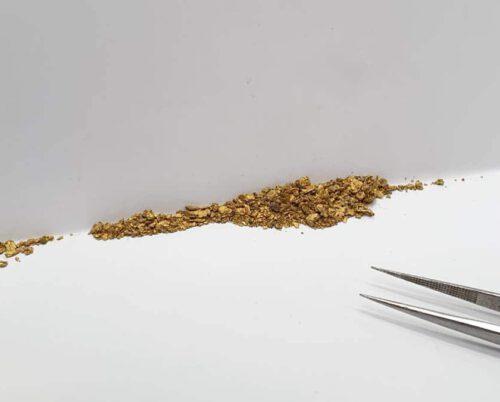 """g 'Japonais'. Bamboe ring met vergeet-me-nietje van eigen """"oud goud"""" gemaakt. Maatwerk uit het Oogst atelier Amsterdam.. Ring Japonais bamboo made from heirloom gold."""